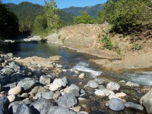 The South Fork of Indian Creek